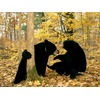black-bear-playing_5803_600x450.jpg