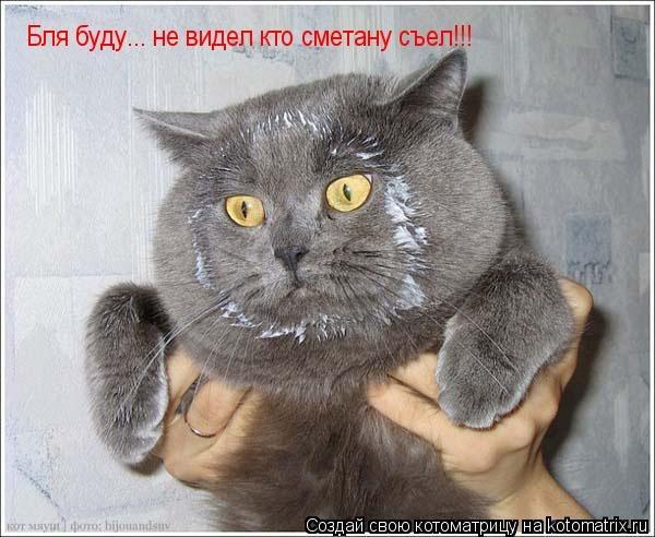 Изображение с http://kotomatrix.ru/images/lolz/2008/11/15/uu.jpg