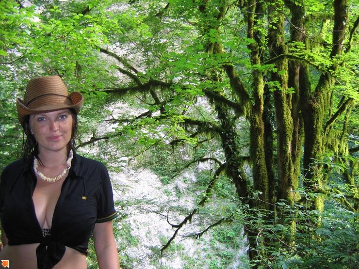 Мега-дерево