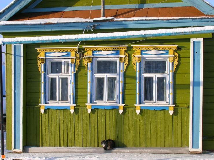 Кот деревенский