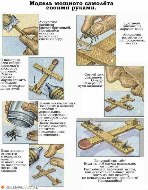 Мухи, инструкция к применению