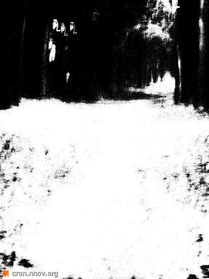 Темные аллеи