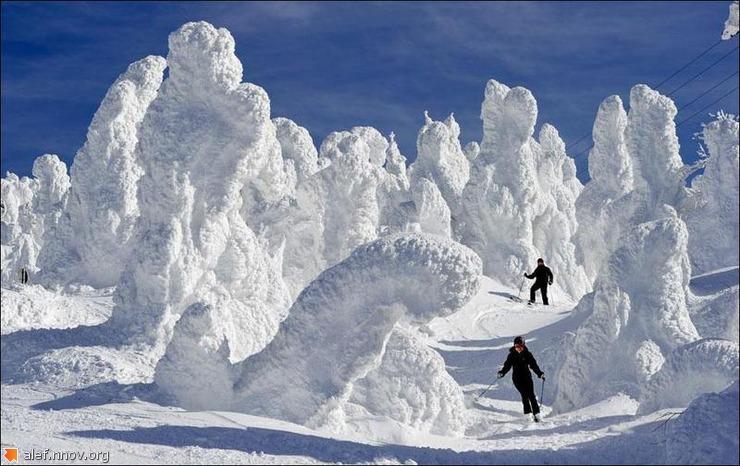 _снег.jpg