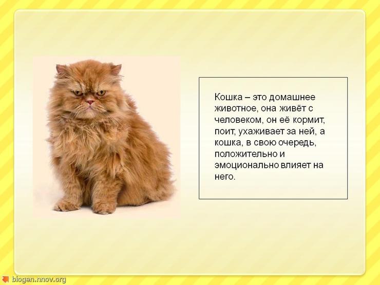 ГшнаБезымянный3.JPG
