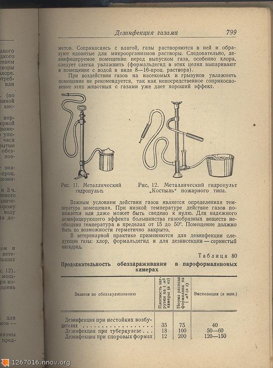 veterinar-4.jpg