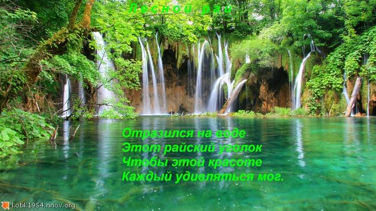 12. Лесной  рай.jpg