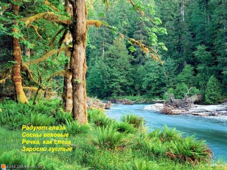 22. Сказочный лес.jpg