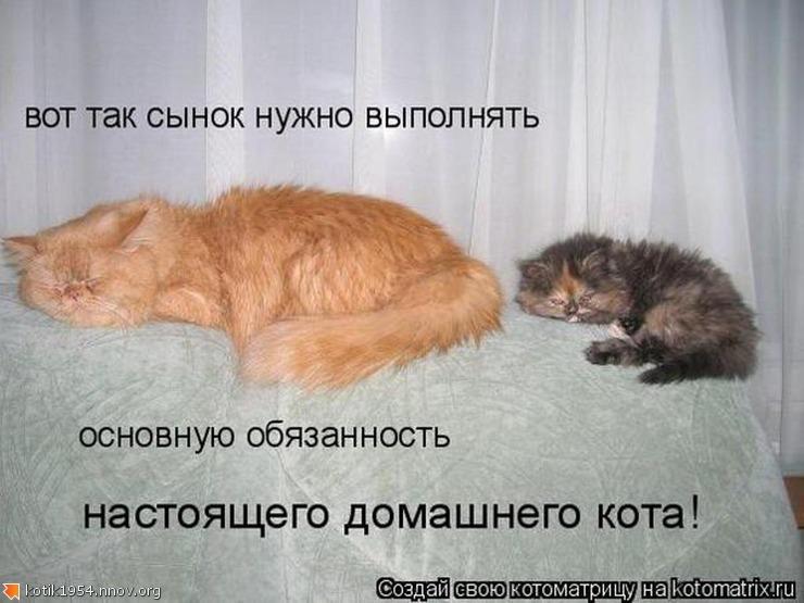 27. Учись сынок как спать.jpg