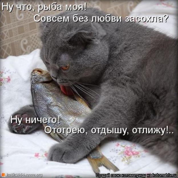 Рыба моя.jpg