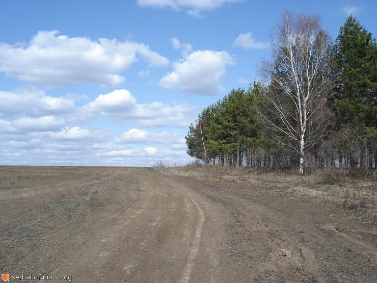 Апрельское поле