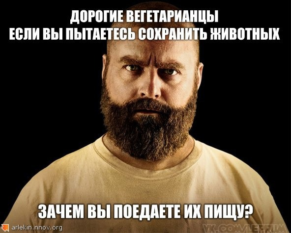 VjguG_E2xoc.jpg