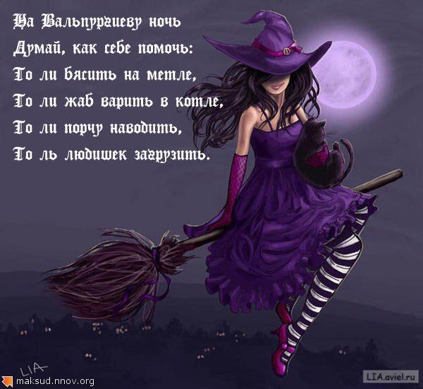 violet_witchкопирование.jpg
