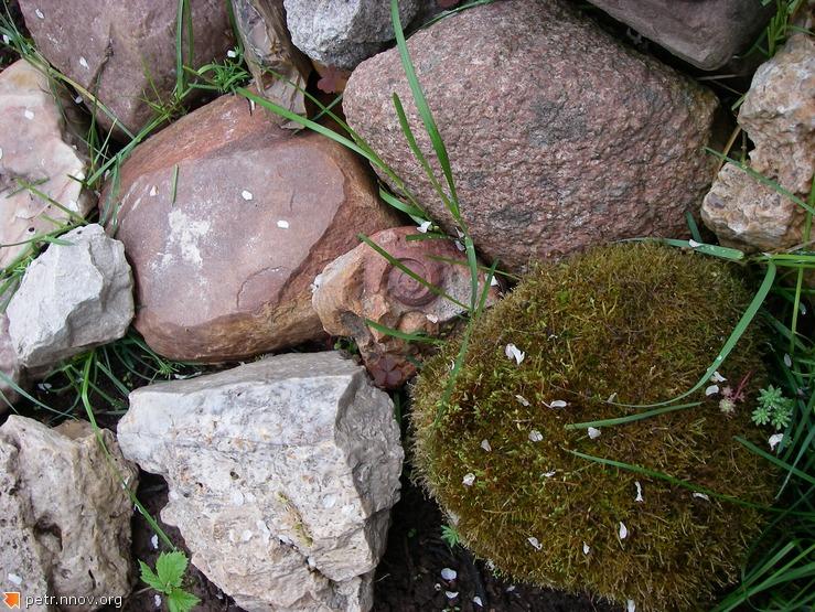 Камни ледникового происхождения