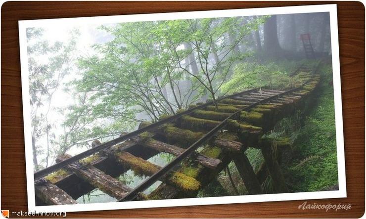 Тайваньский мост.jpg