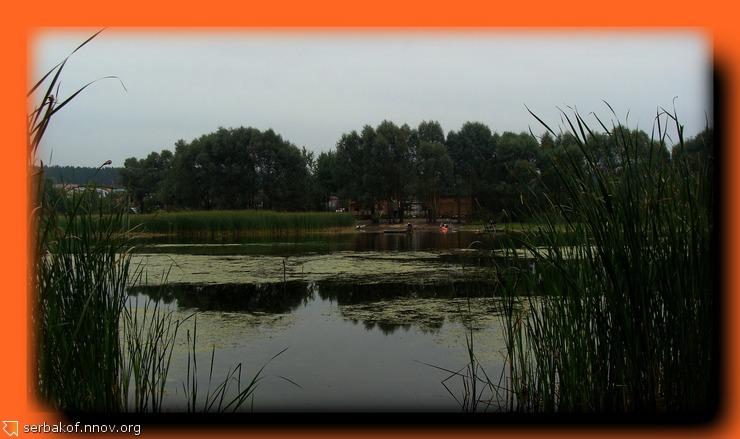 Благоустройство на болоте.jpg