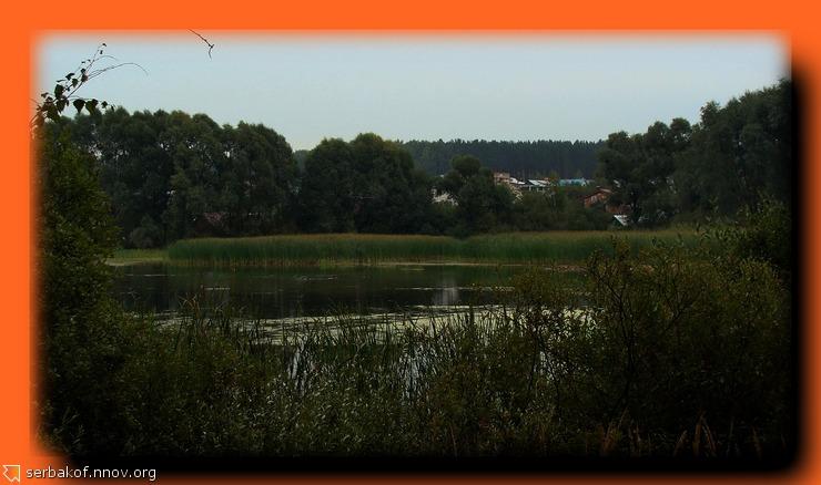 Заболоченная часть озера.jpg