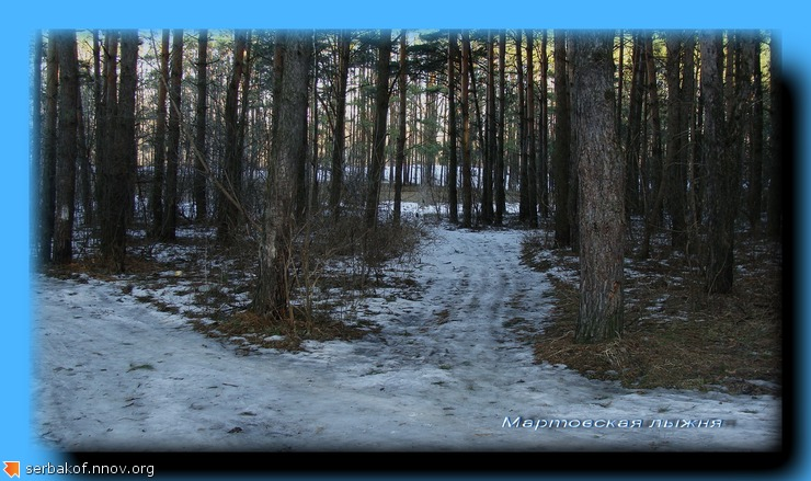 мартовская лыжня.jpg