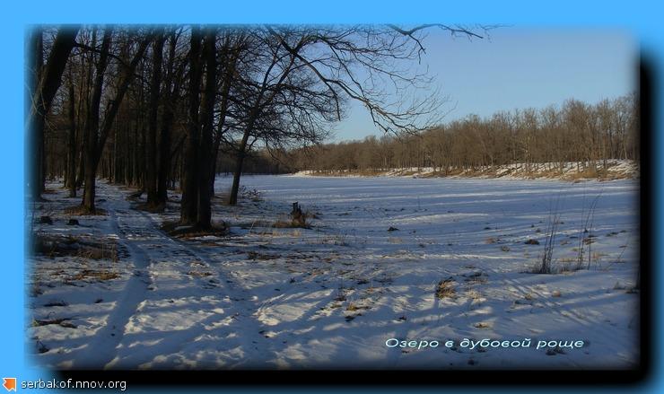 Озеро в дубовой роще.jpg