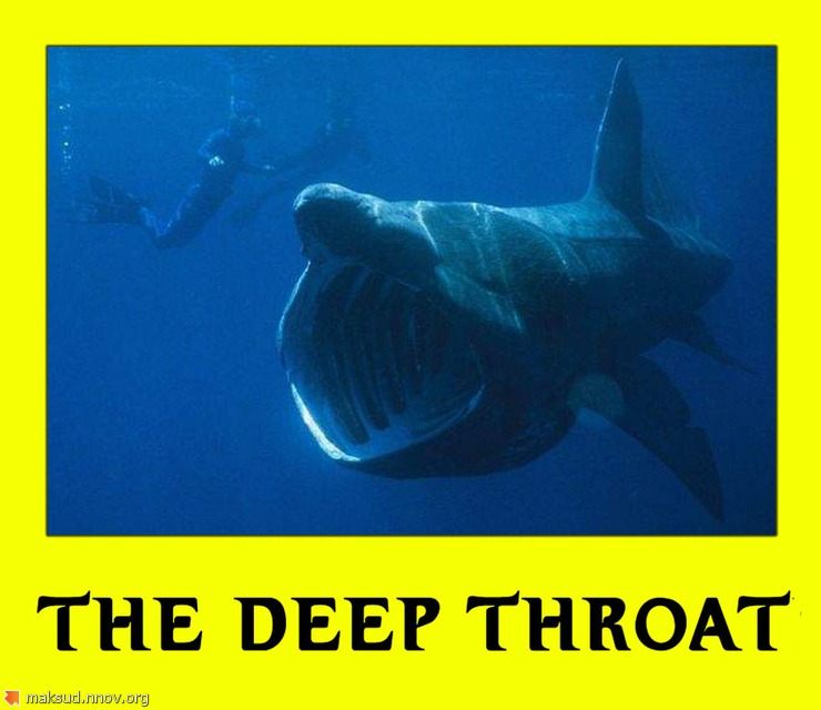 THE DEEP THROAT.jpg