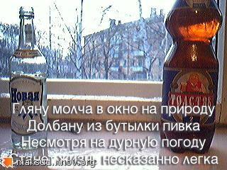 водка с пивком.jpg