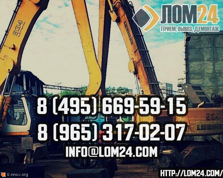 lom2-min.jpg