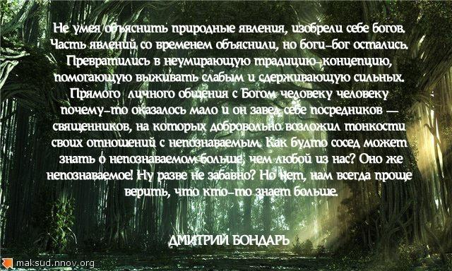 Тёмный лес.jpg