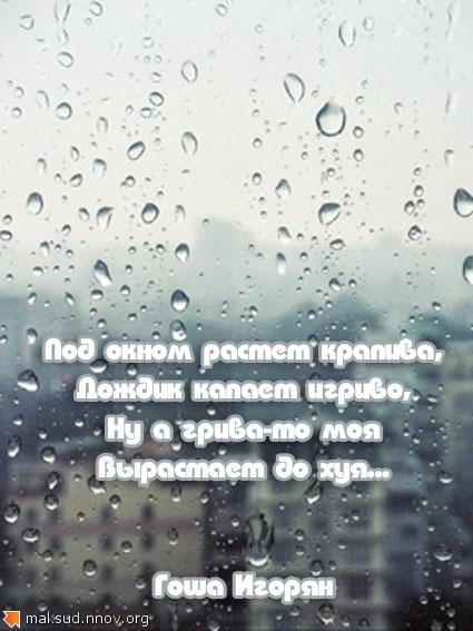 Дождик.jpg