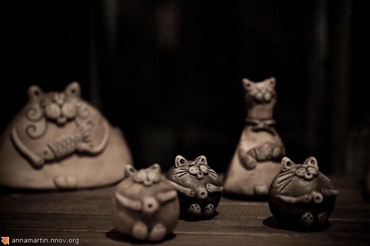 annamartin_cats_72