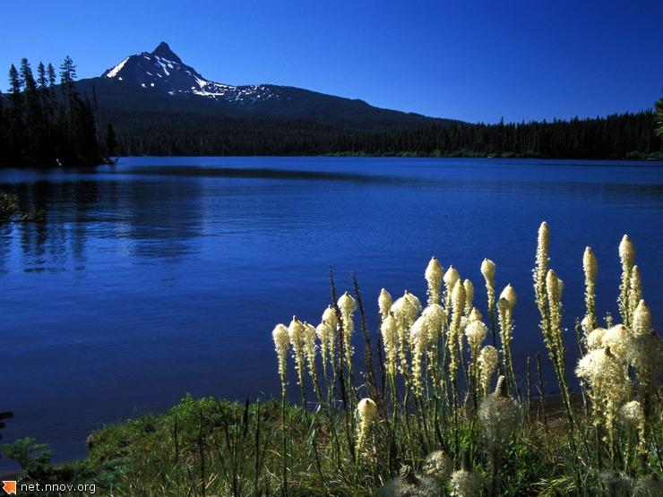 Lake (22)