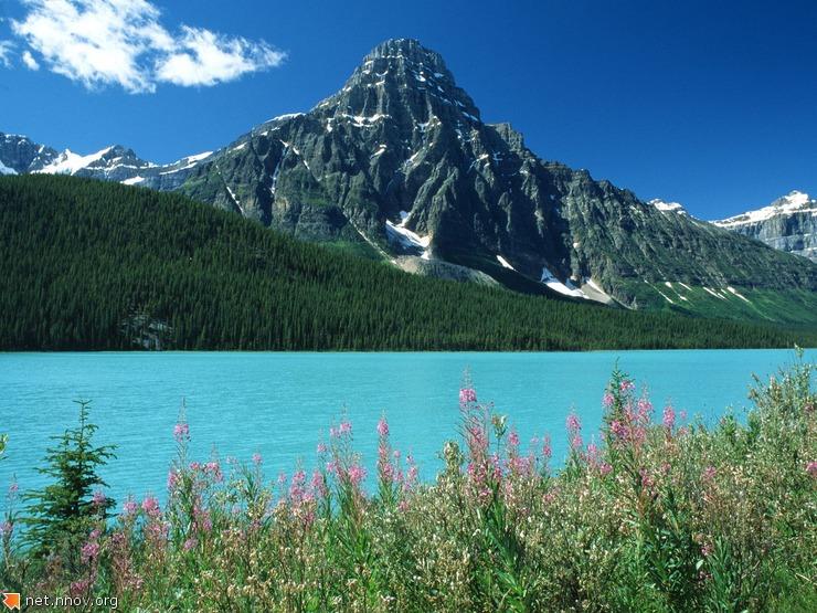 Lake (75)