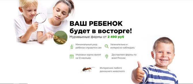 заказать муравьиную ферму antfactory.ru