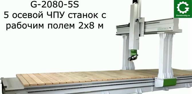 5 ти осевые обрабатывающие центры ЧПУ gorelovskiy.ru