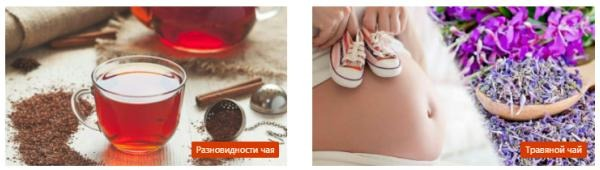чайная энциклопедия chayguru.info