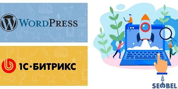 seo-bel.ru раскрутка сайтов