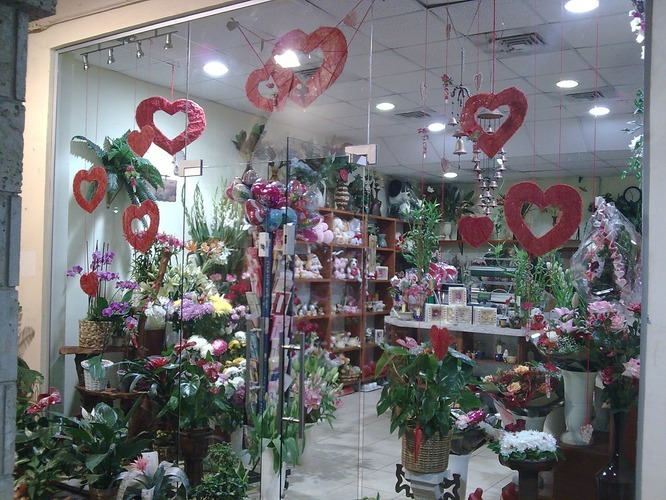 Цветы Израиль
