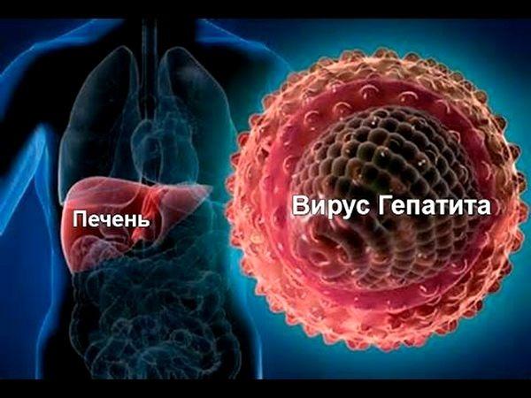 Гепатит С: смертный приговор или излечимый недуг?